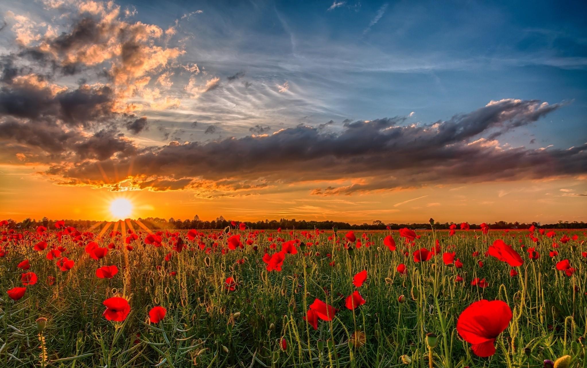 фото природа україна