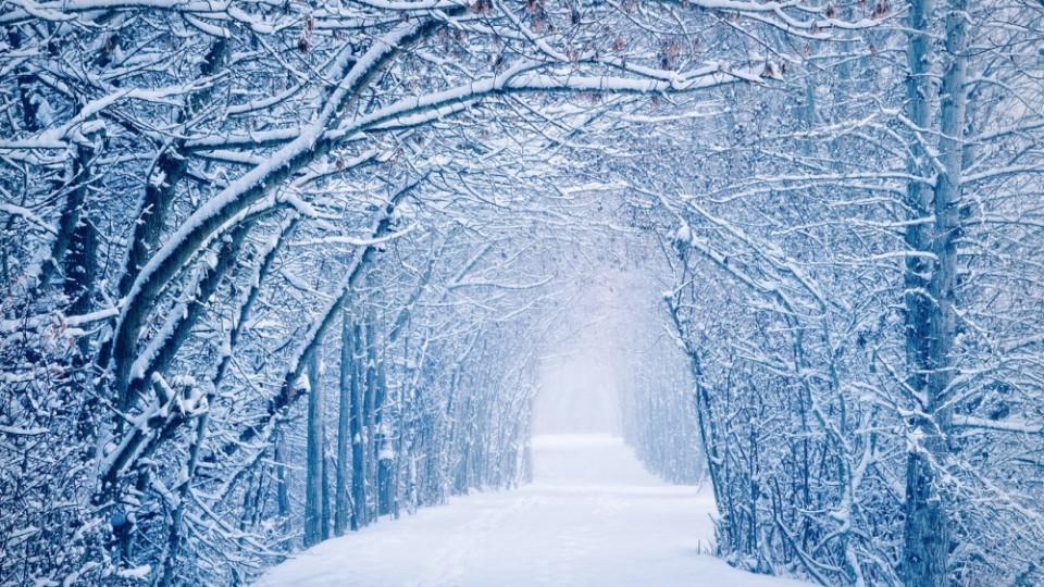 """Результат пошуку зображень за запитом """"зима"""""""