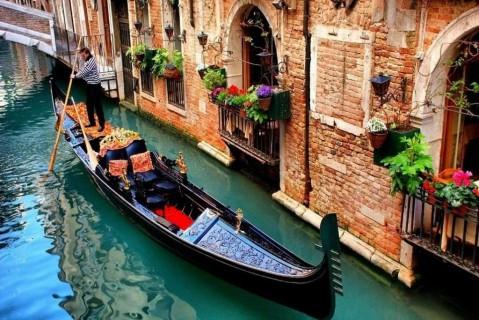 Карантин на пользу: в Венецию вернулись лебеди, а вода стала чище, фото и видео