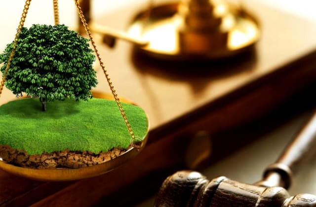 Надання згоди на розробку технічної документації із землеустрою щодо поділу земельної ділянки: позиція ВС
