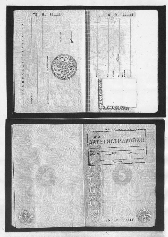 Как сделать копию паспорта на одном листе